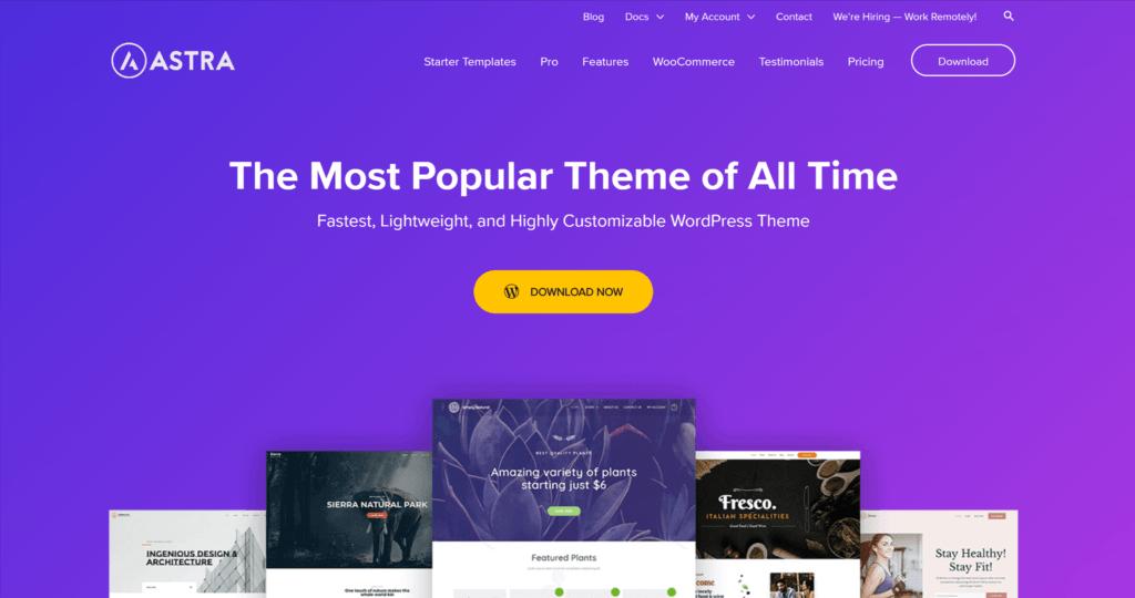 Astra WordPress theme homepage